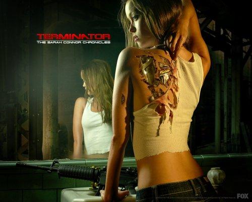 Terminator: S.C.C. - eingestellt