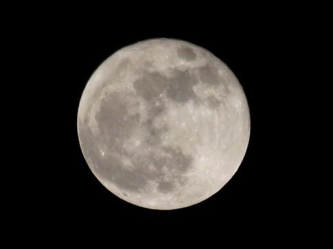 Der (noch fast) volle Mond im Bild