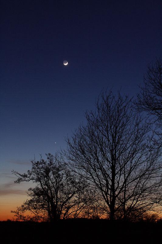 Mond und Jupiter am 07.03.2011