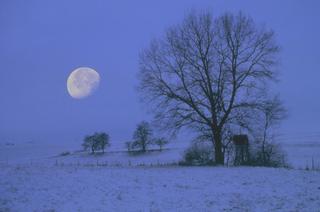 Astronomische Jahresvorschau 2012