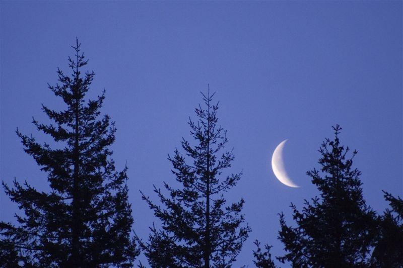 Astronomische Jahresvorschau 2013, Teil 1 - Planetenlauf