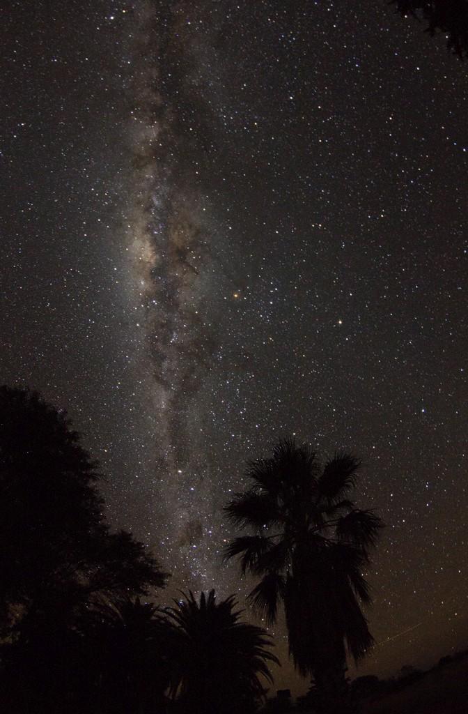 Tropische Nacht