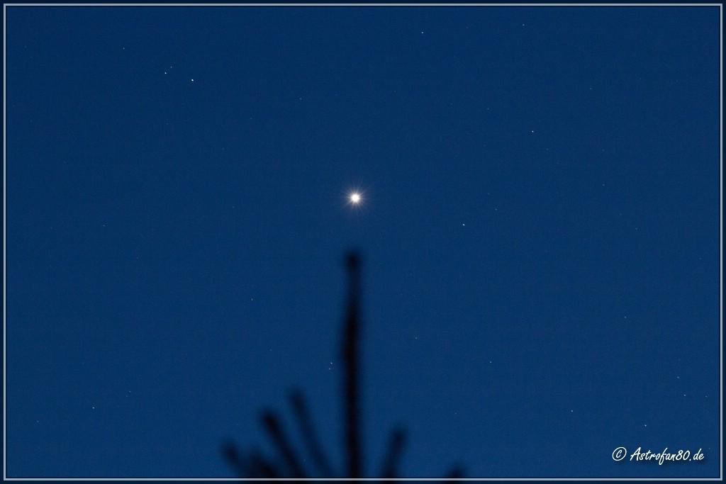 Venus beherrscht den Abendhimmel