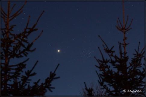 Die Venus am Abendhimmel des 13. April 2015