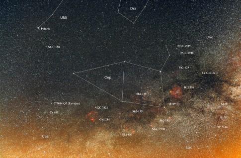 Sternbild Cepheus