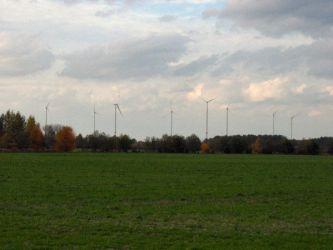 Windräder vom Standort des Biosphärenreservat Spreewald